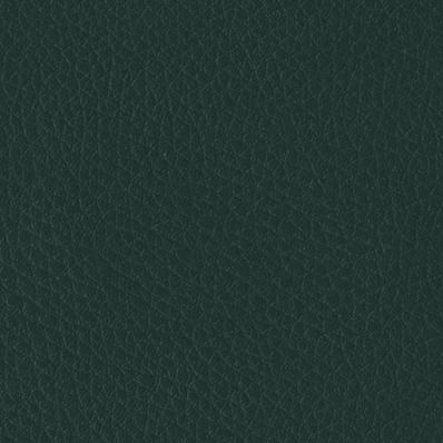 Skaj | V-13 zielony